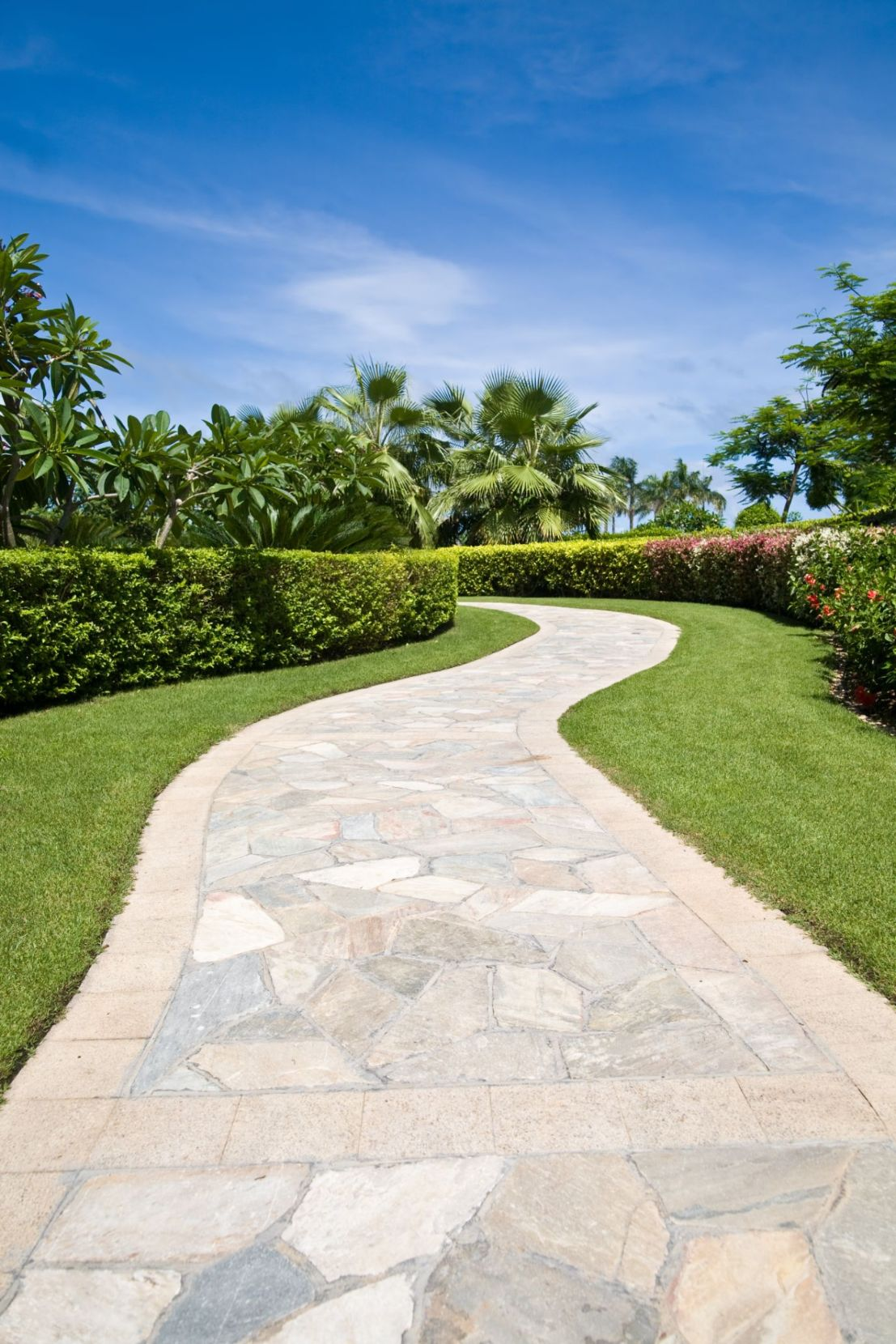 affordable paving contractor near tampa florida