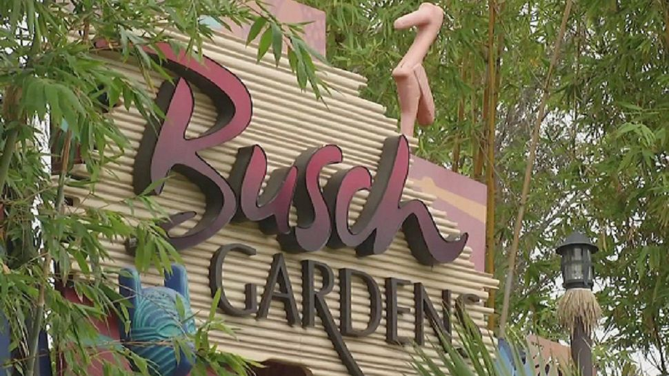 Busch Gardens is the Place to Visit